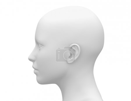 Photo for Female Head Muscles Anatomy - Side view - Royalty Free Image