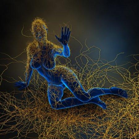 Multiple Sclerosis - immunity system malfunction