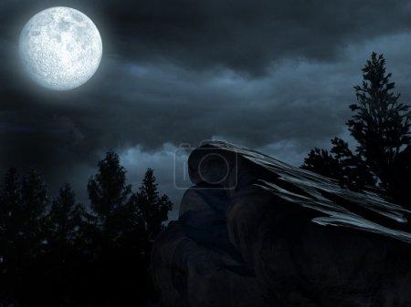 Photo pour Paysages forestiers avec lune et roche - image libre de droit