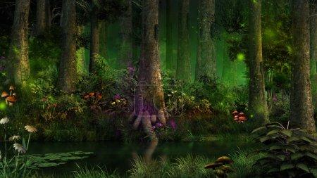 Photo pour Forêt de conte de fées sombre avec des fougères et des fleurs magiques - image libre de droit