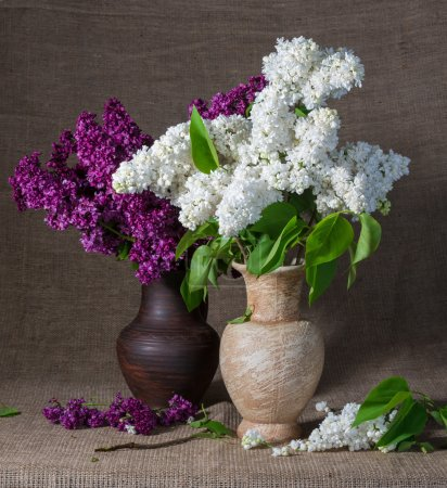 Blooming branches of lilac in vases