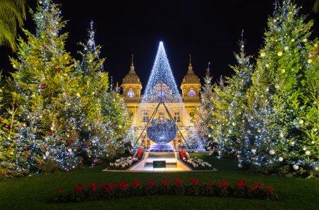 Christmas decorations in Monaco MontecarloFrance