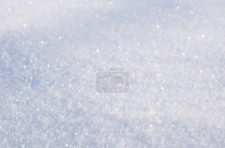 fluffy snow closeup