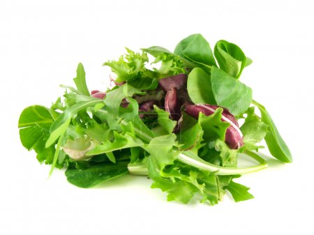 Photo for Salad mix with rucola, frisee, radicchio and lamb's lettuce. Isolated on white background. - Royalty Free Image