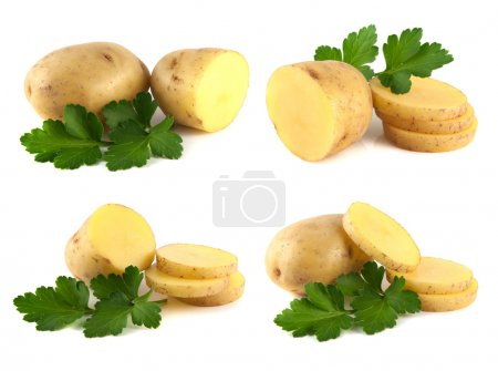 Photo for New potato collection with parsley isolated on white background (set). - Royalty Free Image