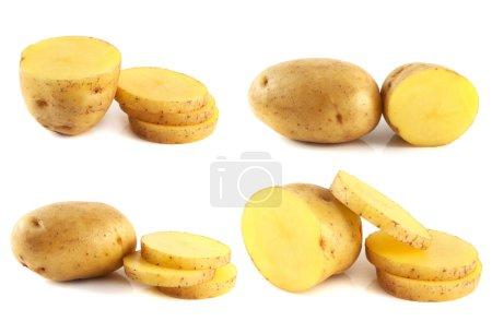 Potatoes set isolated on white background.