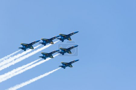 Chicago Air and Water Show, US Navy Blue Angels