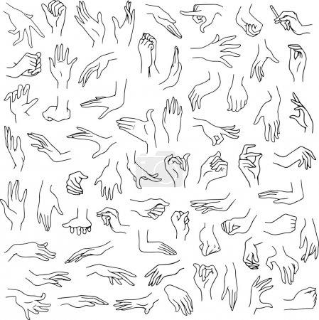 Illustration pour Illustration vectorielle ligne art pack de mains de femme dans divers gestes - image libre de droit