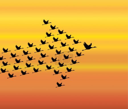 Photo for Leadership and Synergy Concept Illustration : A number of Swans flying against a Bright White sky background lead by a big dark leader swan - Royalty Free Image