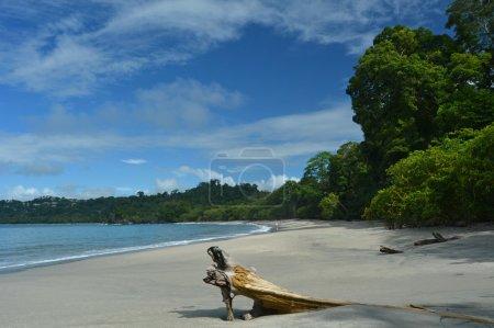 Photo pour Parc Manuel Antonio, Costa Rica - image libre de droit