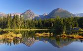 Jaro přírodní jezero v Slovensku tatra mountain