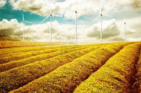 eco energy, wind turbines