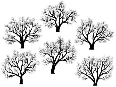 Illustration pour Ensemble de silhouettes vectorielles de grands arbres à feuilles caduques sans feuilles en hiver ou au printemps . - image libre de droit