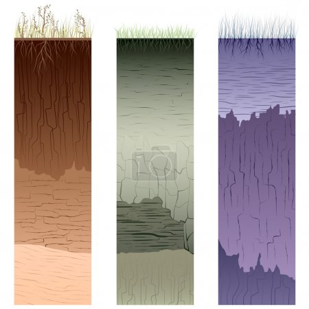 Illustration for Three columns with cut of soil (profile) with a grass, roots,layers of the earth, clay and cracks (Vector illustration). - Royalty Free Image