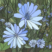 Vector illustration of flower chicory ( Succory)