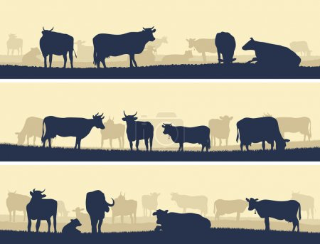 Illustration for Horizontal vector banner: silhouettes of grazing animals (cows and bulls). - Royalty Free Image