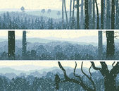 Horizontal banners of winter wood
