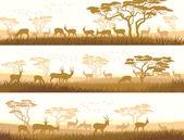 Horizontální bannery volně žijících zvířat v africké savany
