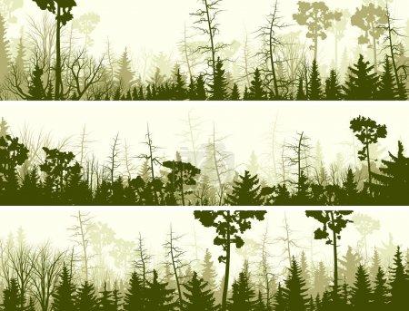 Horizontal banners of coniferous wood.