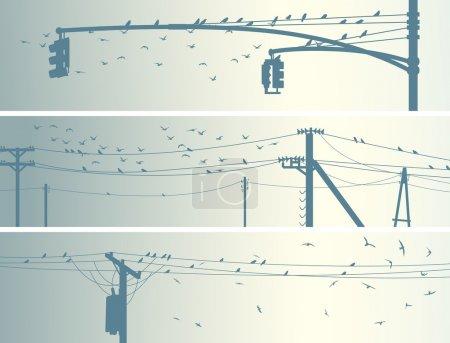 Horizontal banners of flock birds on city power lines.
