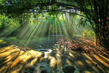 Photo pour Rayon de lumières sur le village de bambou - image libre de droit