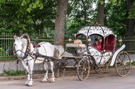 Touristic horse carriage in Suzdal, Russia...