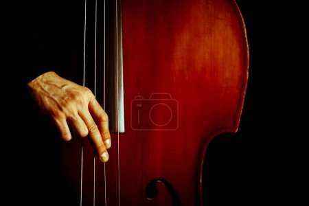 Photo for Color detail of a vintage double bass - Royalty Free Image