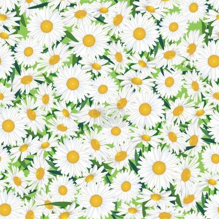 Seamless chamomile background