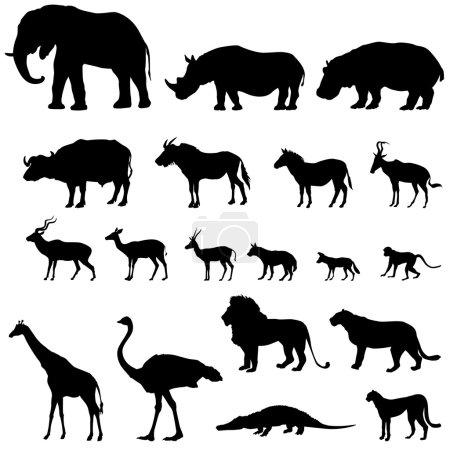 Illustration pour Silhouettes d'animaux africains sur fond blanc - image libre de droit