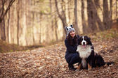 Beautiful Girl with her dog in autumn forest. Bernese Dog