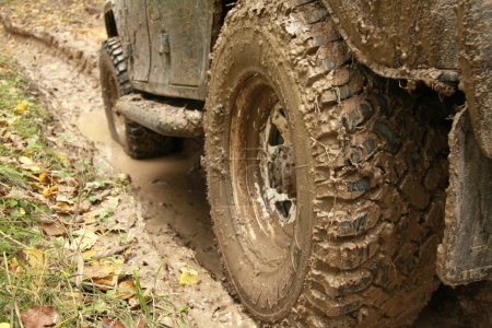 Car's wheels in mud in the forest