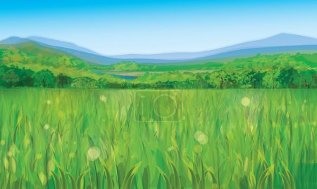 Vector of summer landscape