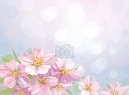Vector of spring blossoming flowers of apple tree.