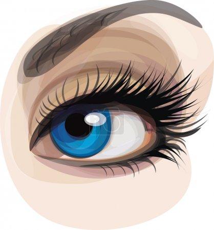 Illustration pour Vecteur d'oeil de belle femme bleue . - image libre de droit