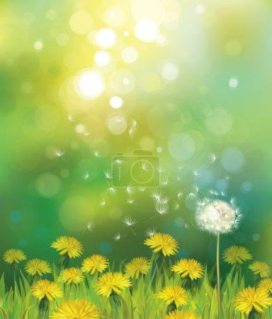 Illustration for Vector of spring background with dandelions. - Royalty Free Image