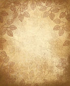 Vector leaves pattern on old paper background.