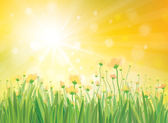 Vector sunshine background with yellow flowers