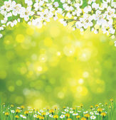 Vector blossoming tree on spring background
