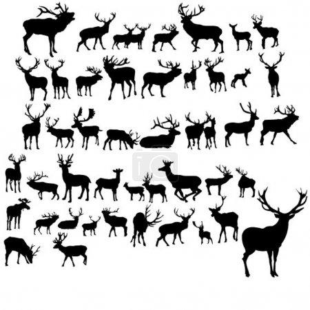 Illustration pour Ensemble de cerfs noirs sur fond blanc - image libre de droit