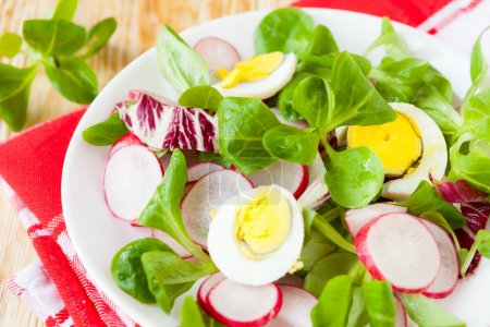 Photo for Nutritious fresh salad with egg and radish, food - Royalty Free Image
