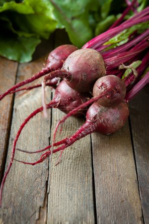 bunch of young beets on the boards