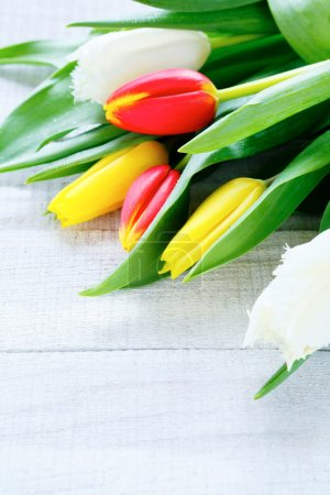 armful of tulips on wooden background