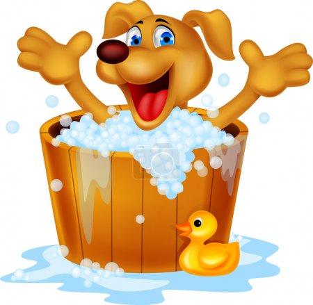 Photo for Dog bathing time - Royalty Free Image