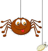 Vector illustration of Spider and prey cartoon