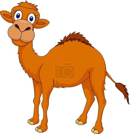 Cute camel cartoon standing