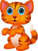 Illustration of Cute cat cartoon
