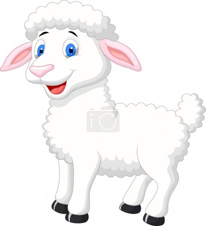 Photo for Cute sheep cartoon isolated on white background - Royalty Free Image