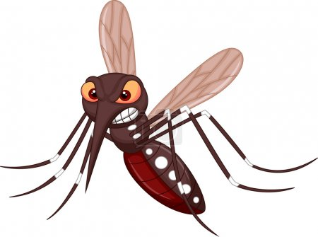 Illustration for Angry mosquito cartoon isolated on white background - Royalty Free Image