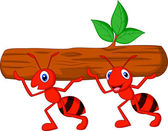 Team of ants carries log
