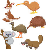 Australian animals cartoon on white background